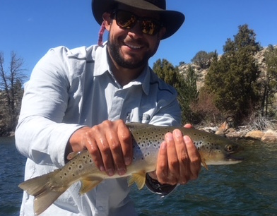 seth and brown trout