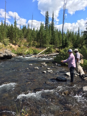 Fly fishing the Yellowstone backcountry