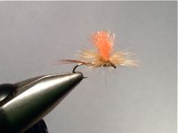 parachute adams with barred dark ginger hackle