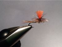 Fly with sharpie colored griz hackle