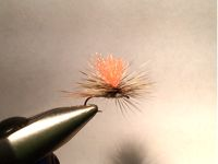 Fly   tied with cree hackle