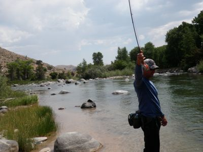 Fly fishing on the Wind River
