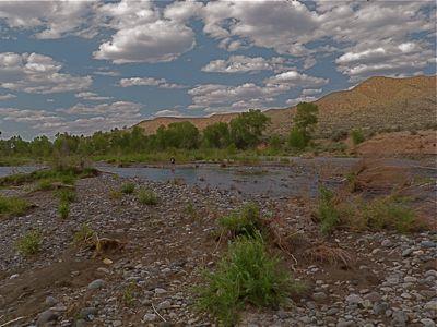 Dubois tributary
