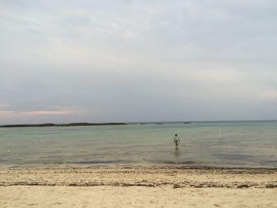 cloudy   bonefish flat