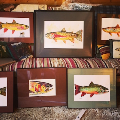 Nate Bennett trout watercolor art