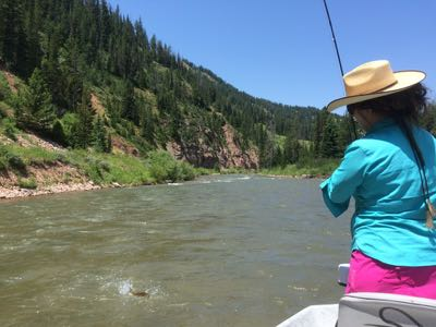 Jamie hooked up on the Hoback river