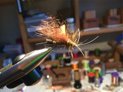 Skwala dry fly