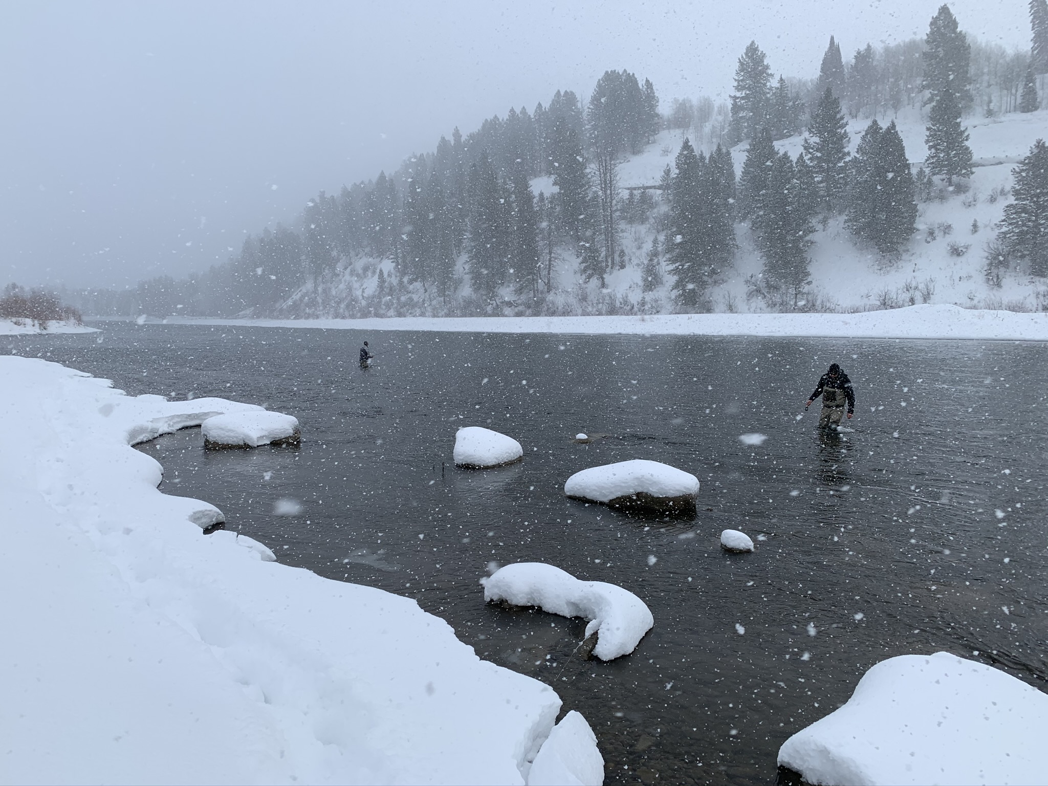 Snake river winter fly fishing